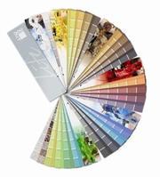 Life от Баумит - наибольшая коллекция цветов для фасадов в Европе